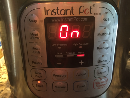 Instant Pot on Saute / More